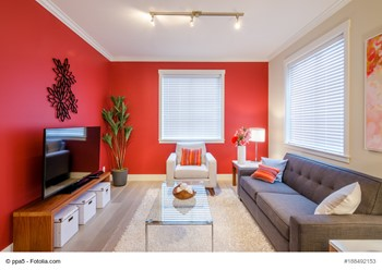 Which Color Should You Paint Your Home's Interior?