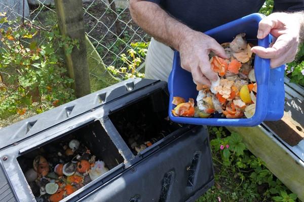 Enriching Your Garden Soil
