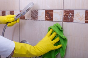 Dread Cleaning the Bathroom? Follow These Cleaning Tips