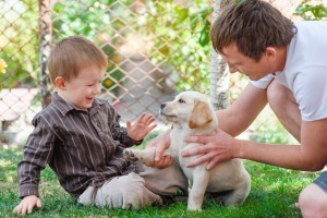 Things to consider before getting a pet