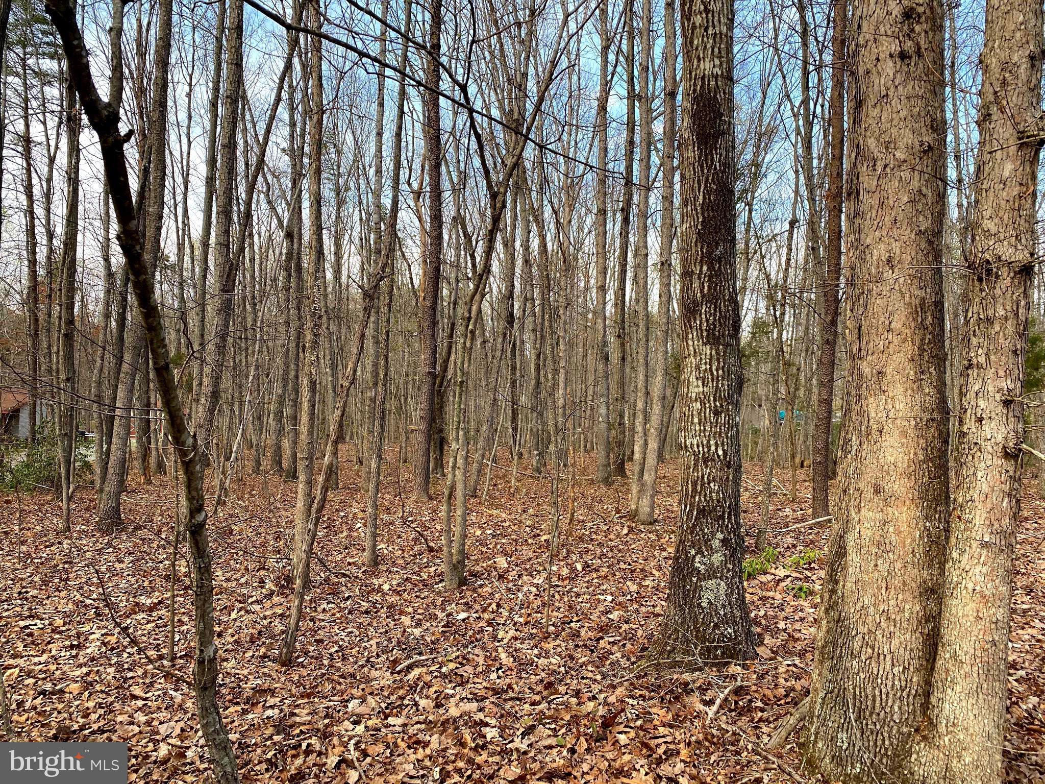 Another Property Sold - Lot 177 Linda Lane, Mineral, VA 23117
