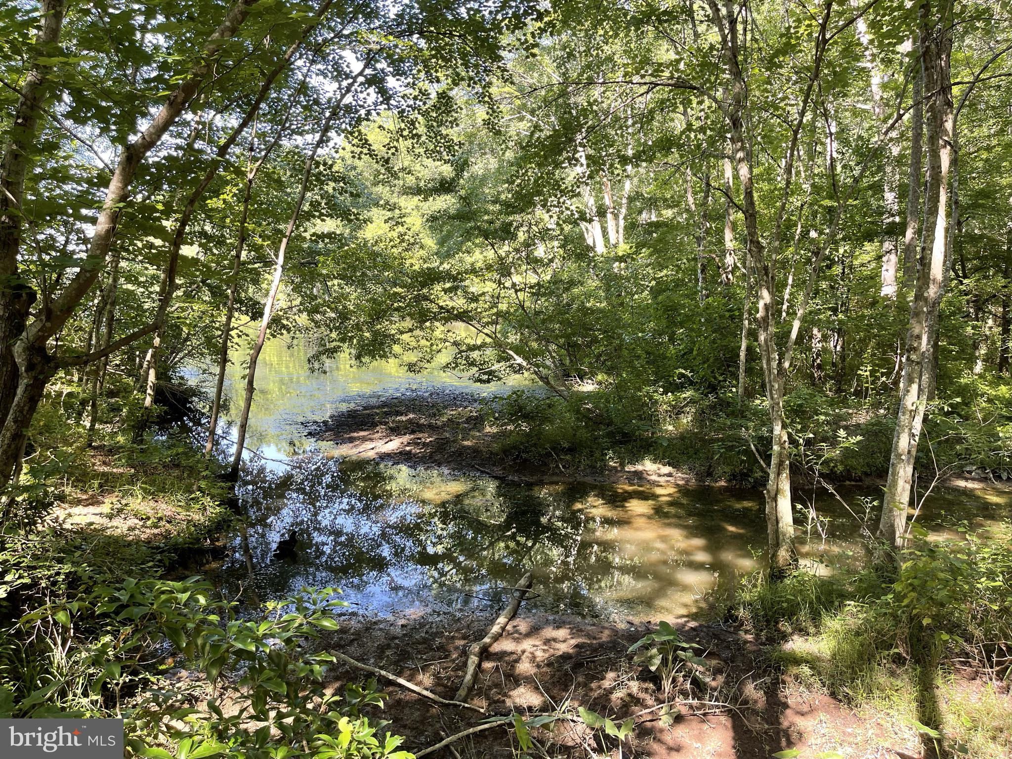 Another Property Sold - 0 Bass CT #lot 25, Orange, VA 22960