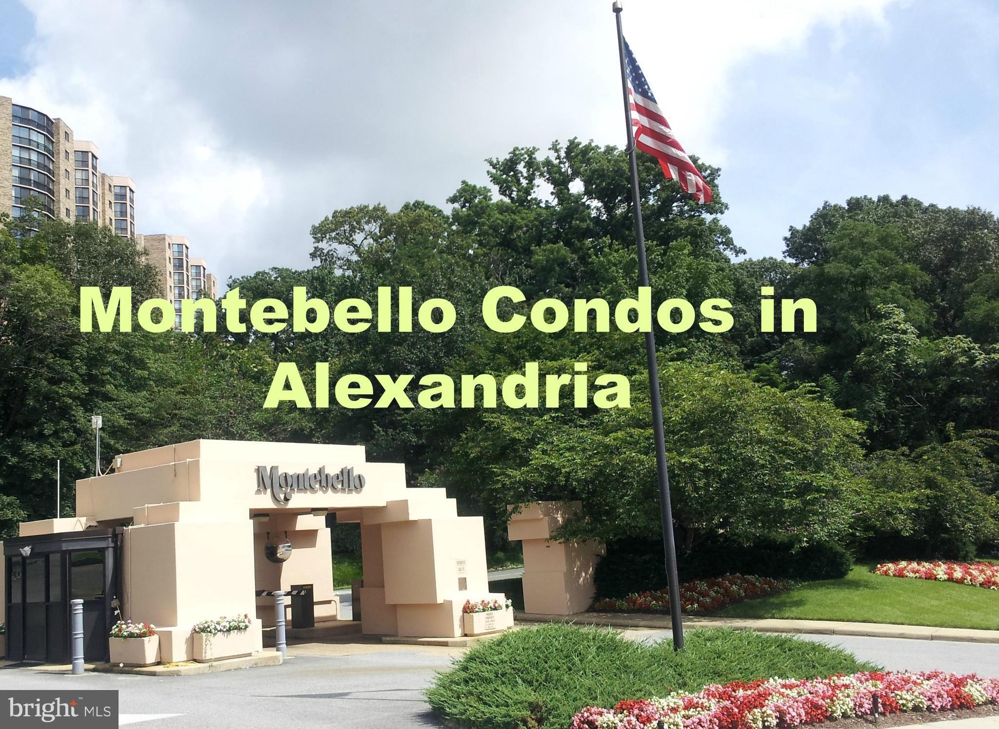 Video Tour  - 5904 Mount Eagle Drive #904, Alexandria, VA 22303