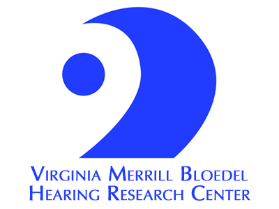 Spectral-Ripple Resolution Assessment for Cochlear Implant Users