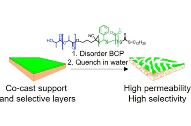 Co-Casting Highly Selective Dual-Layer Membranes with Disordered Block Polymer Selective Layers
