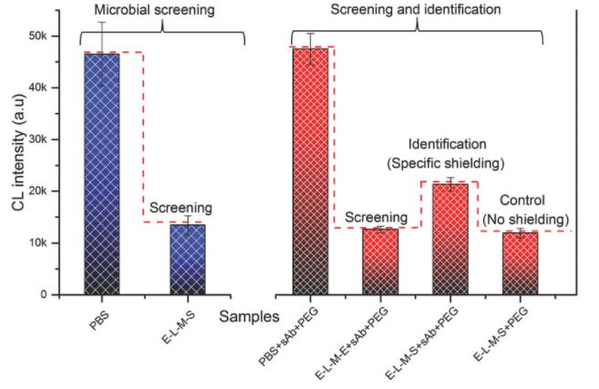 Rapid microbial diagnostics