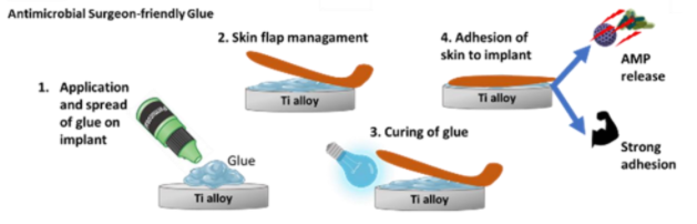 Multi-faceted glue for long-term survival of osseointegrated prosthetic devices
