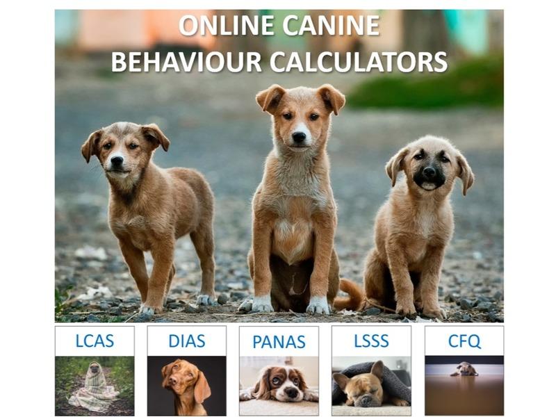 Online Canine Behaviour Calculators