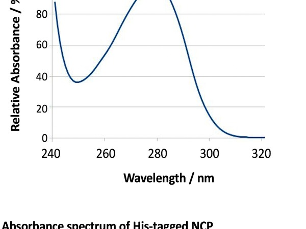Absorbance spectrum of His tagged NCP