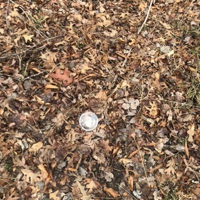 Trash near 12216, Asbury Drive, Tantallon Hills, Piscataway Hills, Fort Washington, Prince George's County, Maryland, 20744, United States