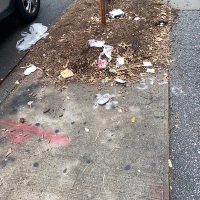Trash near 2175 3rd Avenue, New York