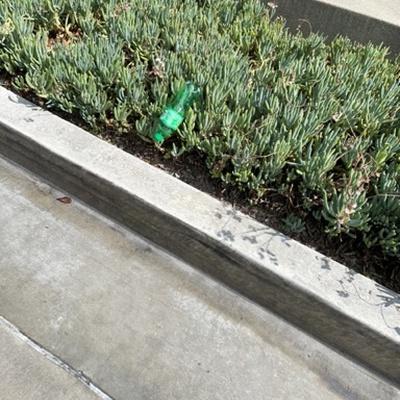 Trash near Flame Broiler, Huggins Street, Douglas Park, Long Beach, California, 990815, United States