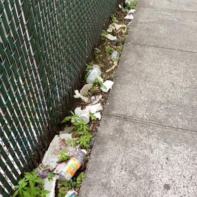 Trash near 1697 Park Avenue, New York