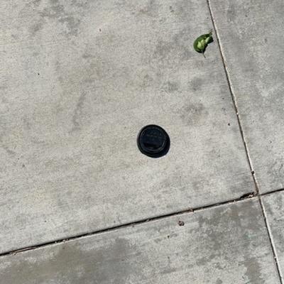 Trash near Utopia, East 1st Street, Long Beach, California, 90802, United States