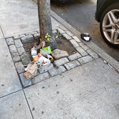 Trash near 1940 Lexington Avenue, New York