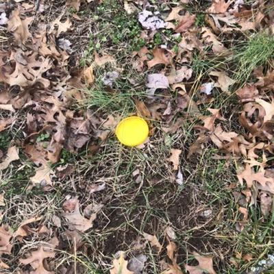 Trash near 12304, Asbury Drive, Tantallon Hills, Piscataway Hills, Fort Washington, Prince George's County, Maryland, 20744, United States