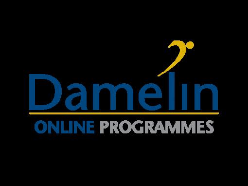 Damelin Online