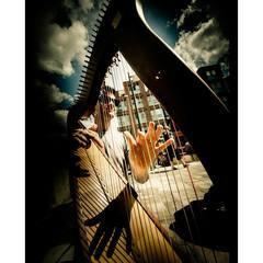 Stephen Wilkinson Harpist in Cambridge