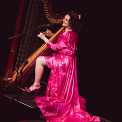 Sam Hickman Harpist in the UK