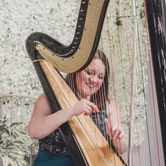 Rebecca Barnes Harpist in the UK