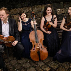 Solem Quartet String Quartet in Sheffield