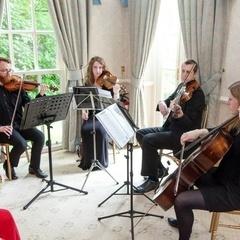 Isca String Quartet String Quartet in Bristol