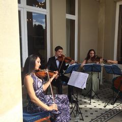Virtuoso String Quartet String Quartet in the UK