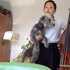 MiJi Yi Double Bass Player in London