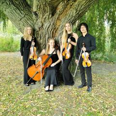 Goldwing Quartet String Quartet in London