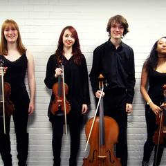 The Marvolo Quartet String Quartet in Leeds