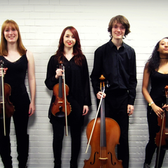 The Marvolo Quartet String Quartet in Sheffield