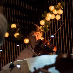 Andrew Bull Violinist in Glasgow