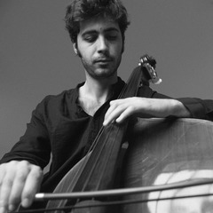 Enzo Manuel dell'Oglio Double Bass Player in London