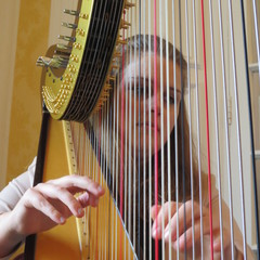 Lucinda Taylor Harpist in the UK