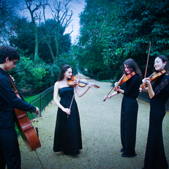 Babel Quartet String Quartet in London