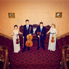 Rylands String Quartet String Quartet in Sheffield