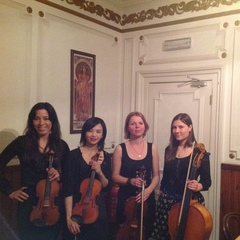 Avizo String Quartet String Quartet in London