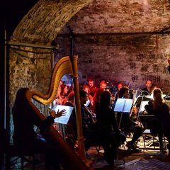 Julia hammersley Harpist in Cardiff
