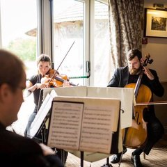 Athena Strings String Quartet in Bradford