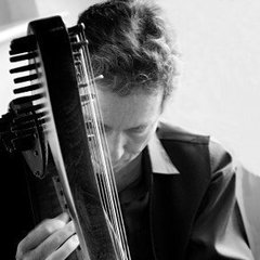 Chris Knowles Harpist in the UK