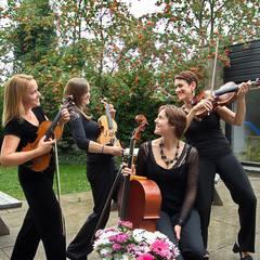 Salisbury String Quartet String Quartet in Bath
