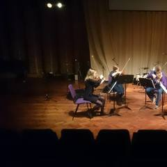 Pingvin String Quartet String Quartet in the UK