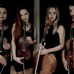 Prima Strings String Quartet in London