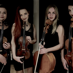 Prima Strings Trio in London