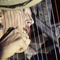 Diane Peters Harpist in the UK