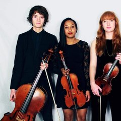 The Marvolo Quartet String Quartet in Bradford