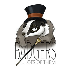 Badgers... Lots Of Them Function Band in Birmingham