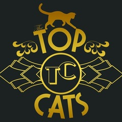 Top Cats Band Saxophone Player in Leeds