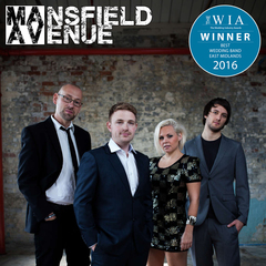 Mansfield Avenue Function Band in Birmingham
