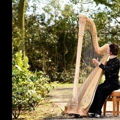 Sophie Askew Harpist in Edinburgh